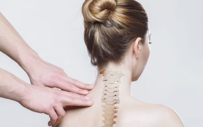 Difference Between Chiropractic Adjustment, Spinal Manipulation, and Spinal Mobilization