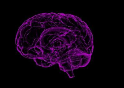 The Myth of Brain Chemical Imbalance